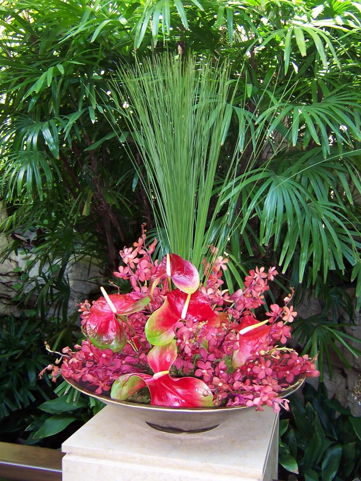 Resort Flowers Tropical Plant Technician