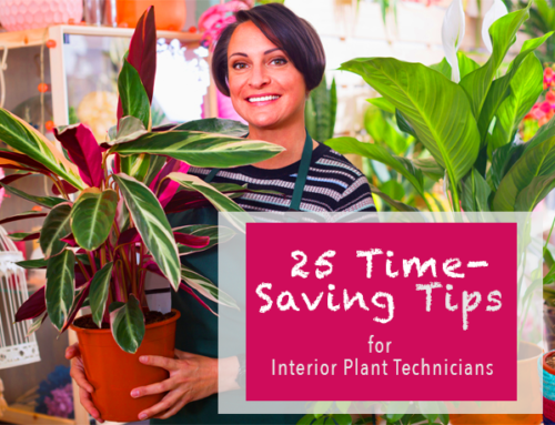 25 Time-Saving Tips for Interior Plant Technicians