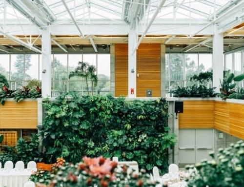 Plant Care Checklist