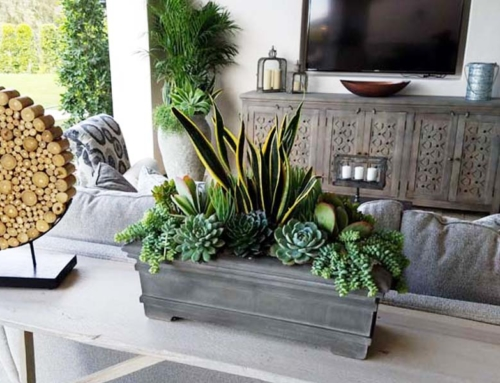 Dos and Don'ts of Residential Interiorscaping